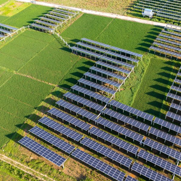 Solar energy and the surrounding rice field